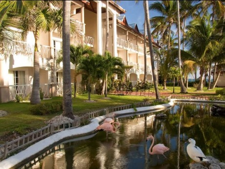 Be Live Grand Punta Cana 5*