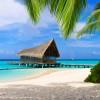 Kuramathi Island Resort 4+ от 2600 $